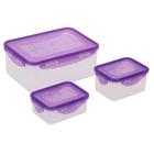 Набор пищевых контейнеров, 3 шт: 350 мл; 470 мл; 2,3 л, с герметичной крышкой, цвет МИКС