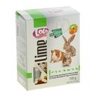 Минеральный камень для грызунов и кроликов LoLo Pets с апельсином XL 190 гр