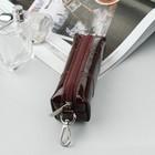 Ключница на молнии, кольцо, карабин, цвет бордовый