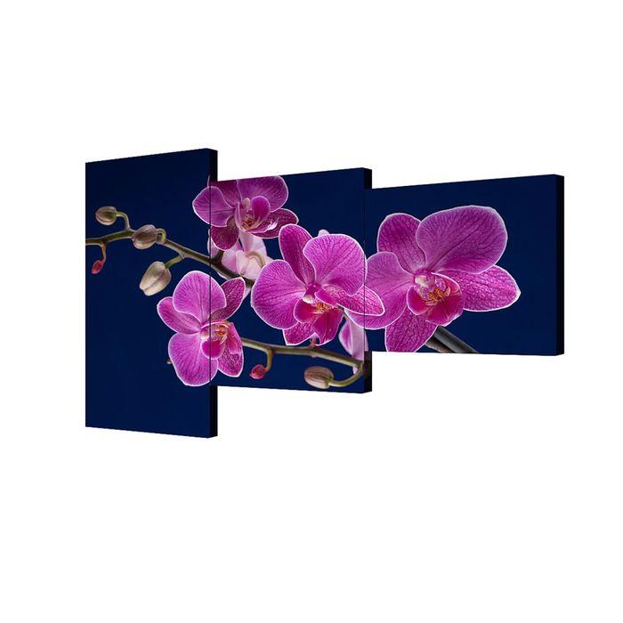 """Модульная картина на подрамнике """"Орхидея"""", 50×100 см, 50×70 см, 50×50 см, 100×150 см"""