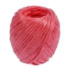 Шпагат полипропиленовый, 60 м, цвет красный