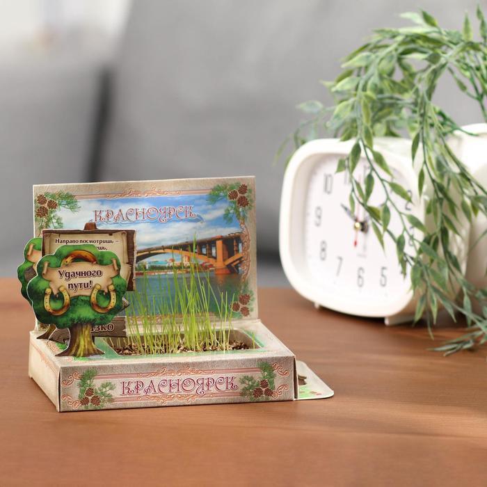 Растущая травка в открытке «Красноярск» - фото 703806