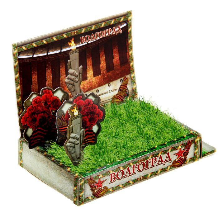 Растущая травка в открытке «Волгоград»