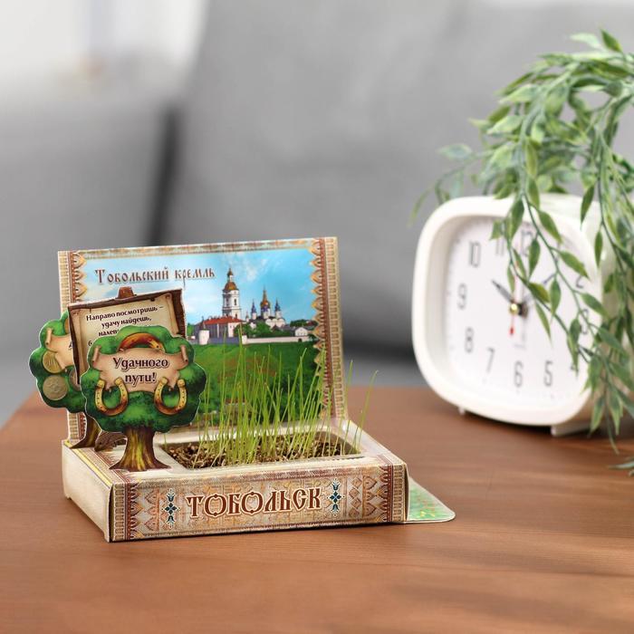 Растущая травка в открытке «Тобольск» - фото 703860