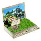 Растущая травка в открытке «Омск»