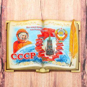 Магнит в форме книги 'СССР' Ош