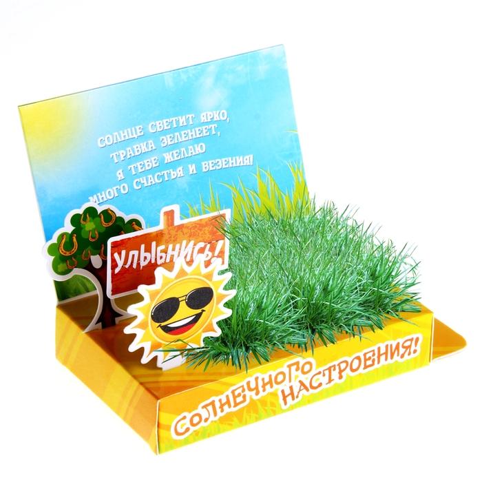 Открытка растущая травка, сделать