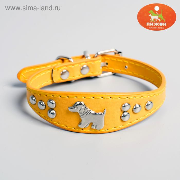 Ошейник-селедка со щенком, 31 х 2,5 см, искусственная кожа, оранжевый