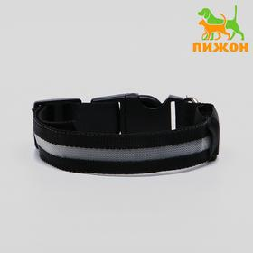 Collar with backlight, S, 38-40 cm, 3 mode of light, black and white