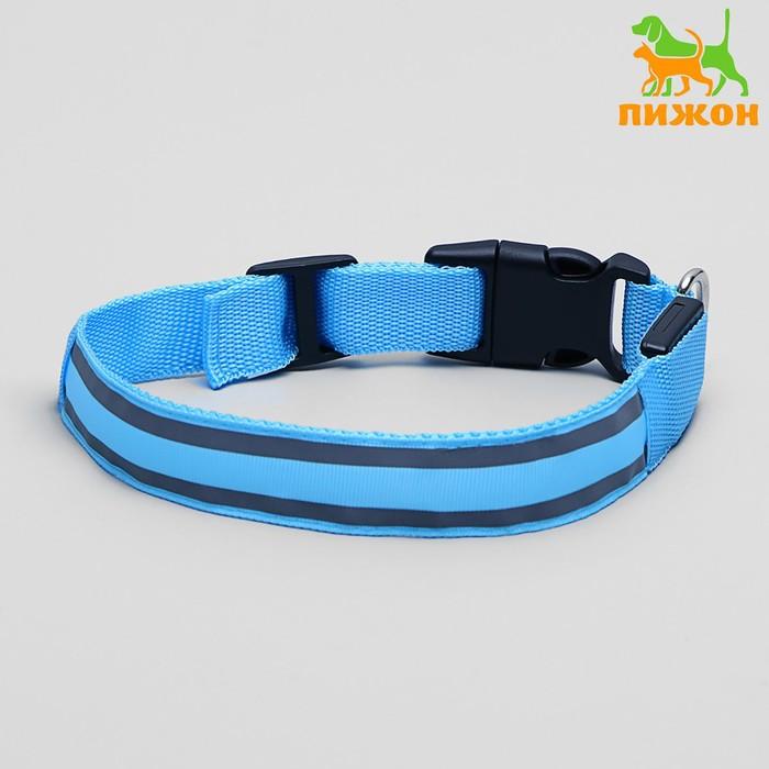 Ошейник с подсветкой и 2 светоотражающими полосами, 40-45 см, 3 режима свечения, голубой