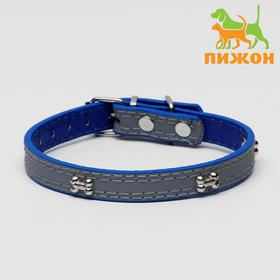 Dog collar with reflective strip and bones, 37 x 1.3 cm, blue