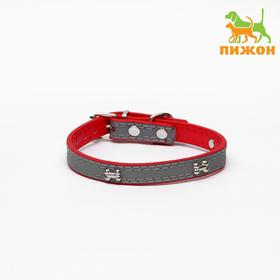 Ошейник со светоотражающей полосой и косточками, 37 х 1,3 см, красный