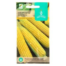Семена Кукуруза Хуторянка сахарная 3 гр. Ош
