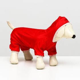 Комбинезон для собак, размер XS (ДС 18-20 см, ОШ 24 см, ОГ 27-30 см), красный, Ош