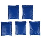 Мешочки для метания (набор 5 шт. по 250г), цвета МИКС