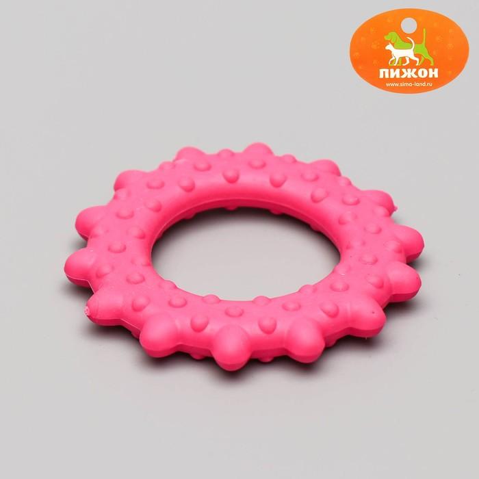 """Игрушка жевательная """"Кольцо с шипами"""", TPR, 8,5 см, микс цветов"""