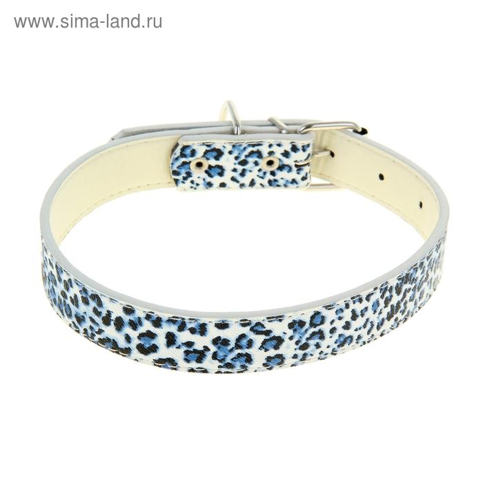 """Ошейник """"Леопард"""" 52 х 2,5 см, искусственная кожа, синий с белым"""