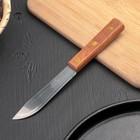 """Нож """"Деревянная рукоять"""" лезвие 10 см"""