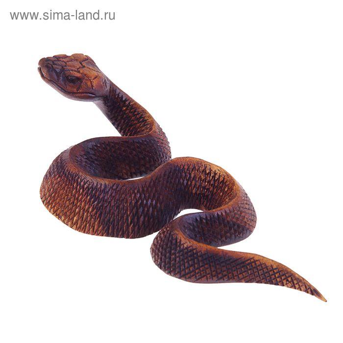 """Сувенир """"Индонезийская змея"""", коричневый"""