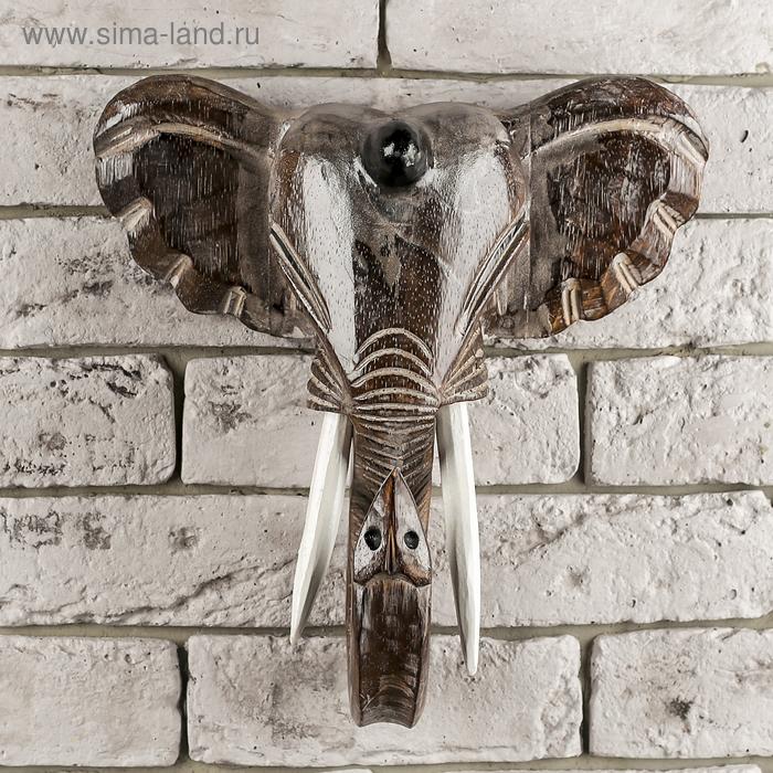 "Сувенир ""Мощная голова слона"""
