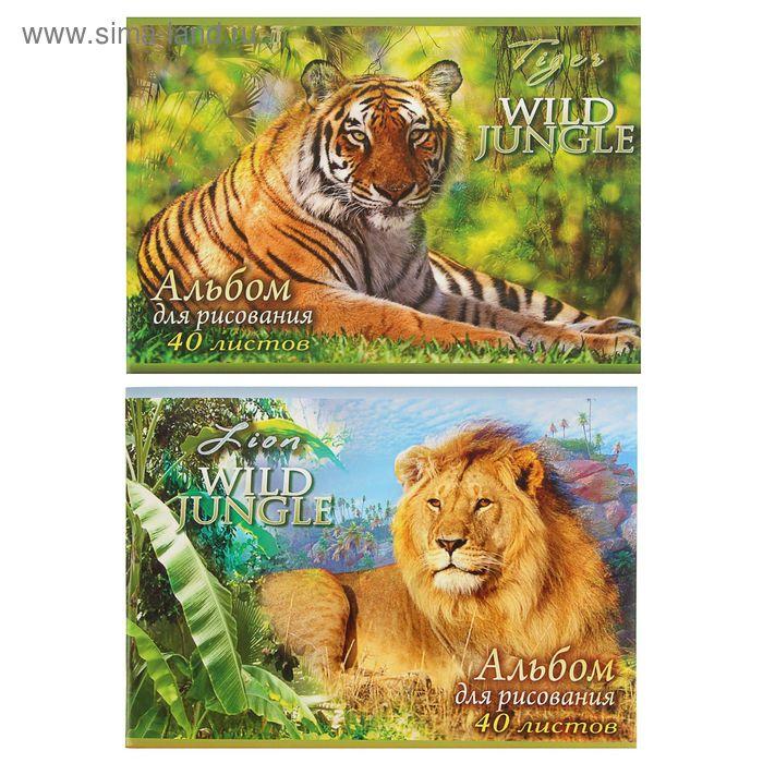 Альбом для рисования А4, 40 листов на скрепке Wild Jungle, обложка картон 190-215г/м2, блок офсет 100г/м2, МИКС