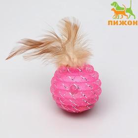 Шар-погремушка Праздничный с перьями, 4,5 см, микс цветов