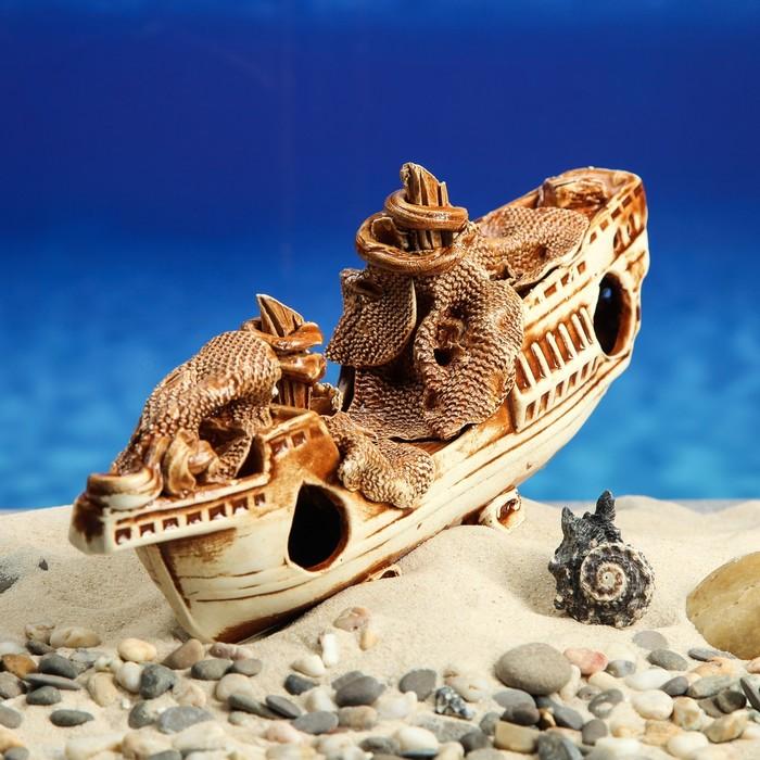 фото картинки затонувших кораблей для аквариума дочь священника учительница