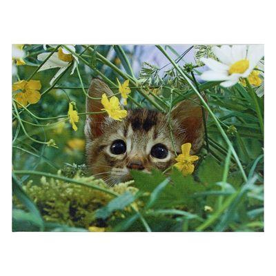 "Картина на подрамнике ""Котик в траве"""