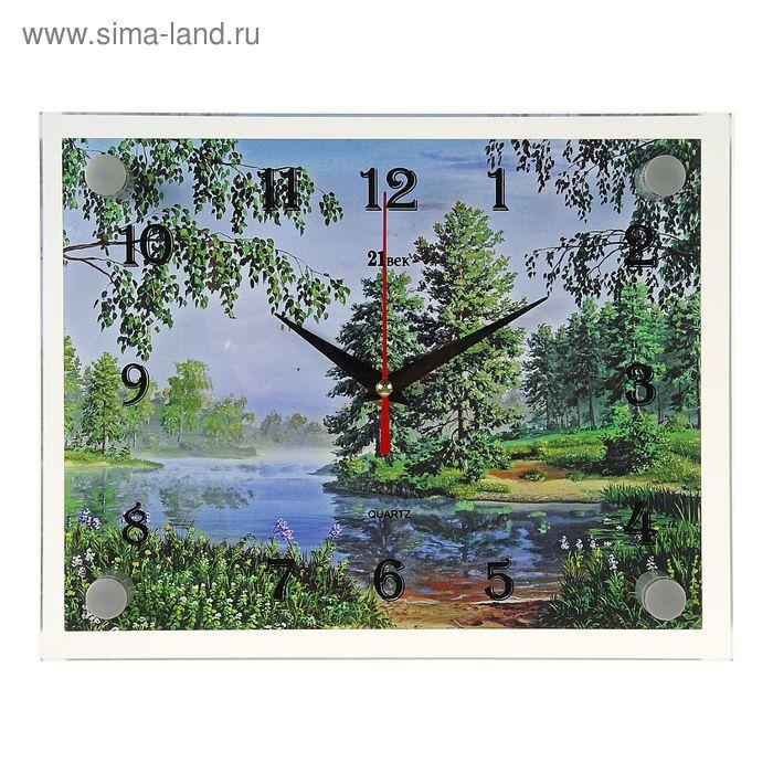 """Часы настенные прямоугольные """"Заводь в лесу"""", 20х26 см микс"""