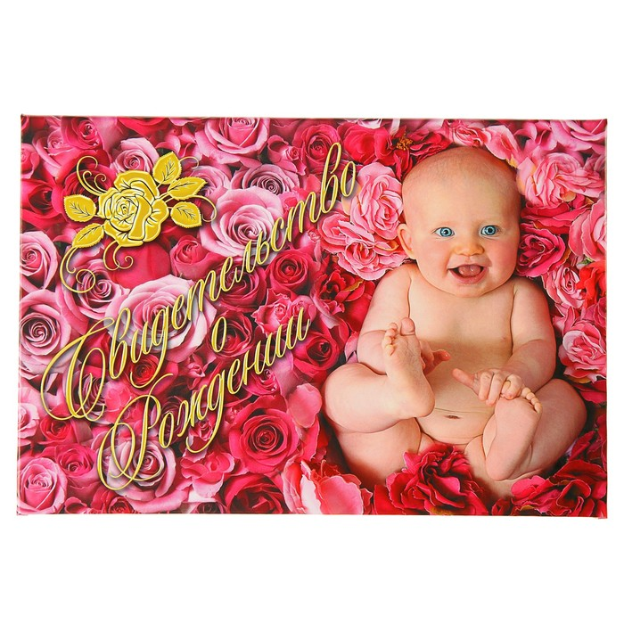 """Папка для свидетельства о рождении """"Малыш в розах"""", А5, ламинированная"""