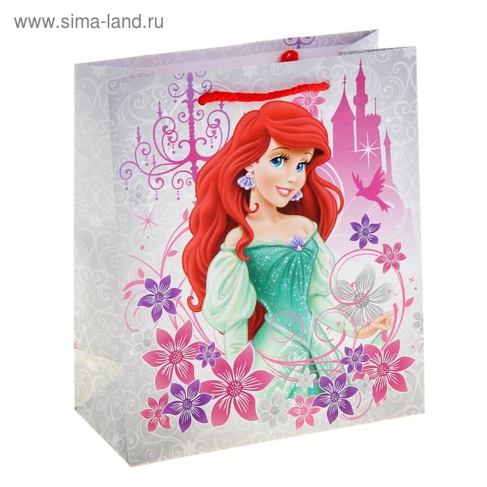"""Пакет подарочный """"Принцесса"""" 18х21 см, Disney Princess"""