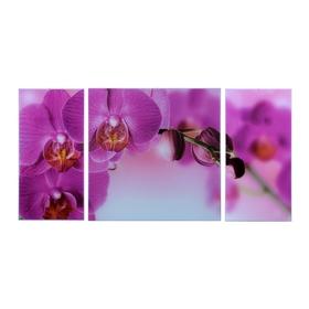 """Модульная картина на стекле """"Орхидеи в розовой дымке"""", 2 — 25×50, 1 — 50×50 см, 100×50 см"""