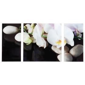 """Модульная картина на стекле """"Белые орхидеи"""", 2 — 25×50, 1 — 50×50 см, 100×50 см"""