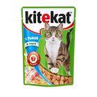 Влажный корм KiteKat для кошек, рыба в соусе, пауч, 85 г