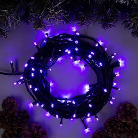 """Гирлянда """"Нить"""" 10 м , IP44, тёмная нить, 100 LED, свечение фиолетовое, 8 режимов, 220 В"""
