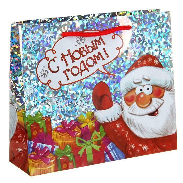 Пакет подарочный голография «Дед мороз», 23 × 27 см