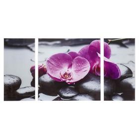 """Модульная картина на стекле """"Фиолетовые орхидеи на камнях"""""""