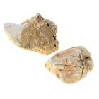 """Камень натуральный """"Колорадо"""" для декора, UDeco Colorado Rock S, размер 5-15 см, 1 шт"""
