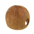 Пещера из кожуры кокоса, 3/4 кожуры кокоса большого размера JBL Cocos Cava
