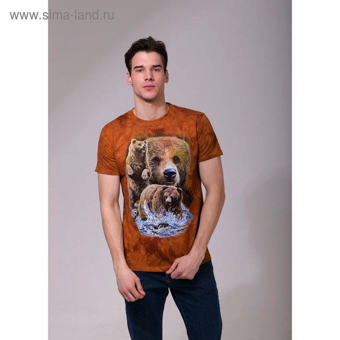 Футболка мужская Collorista 3D Brown Bears, размер S (44), цвет коричневый