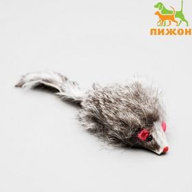 Mouse fur, 7.5 cm, dark grey