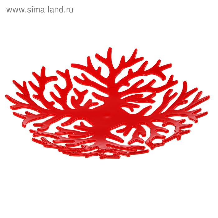 """Блюдо для фруктов """"Коралловый риф"""", 24 см, цвета МИКС"""