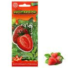 "Ароматизатор для авто ""Luazon Fruit Passion"", волнующая клубника"
