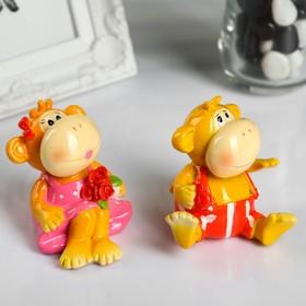 """Souvenir """"Monkey bright"""" MIX"""