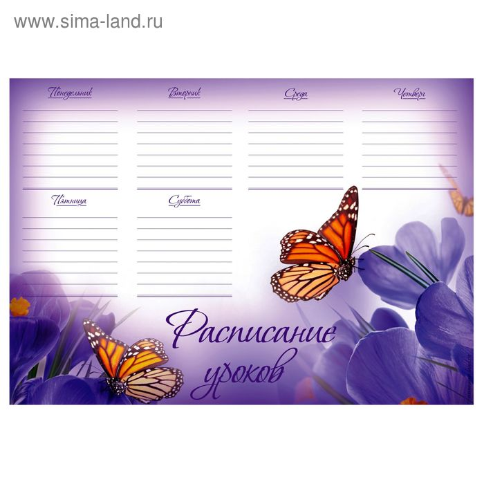 """Расписание уроков А4 """"Бабочки"""""""