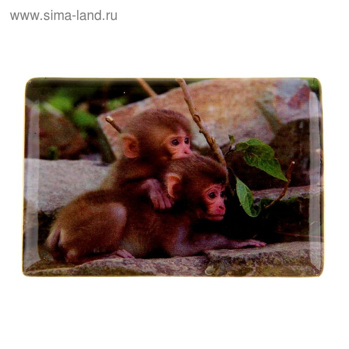 "Магнит керамика ""Малыши обезьянки"""