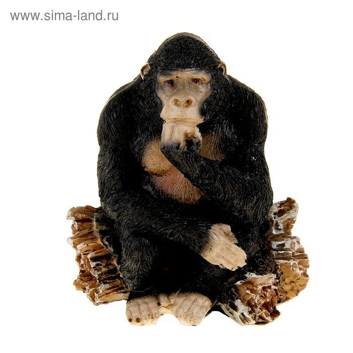 """Сувенир """"Шимпанзе на бревне"""" МИКС"""