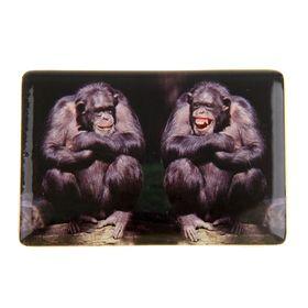 """Magnet """"Monkey tete-a-tete"""""""
