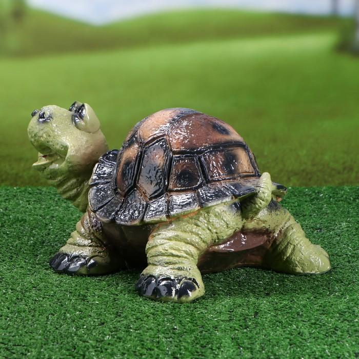 Черепаха веселая картинка