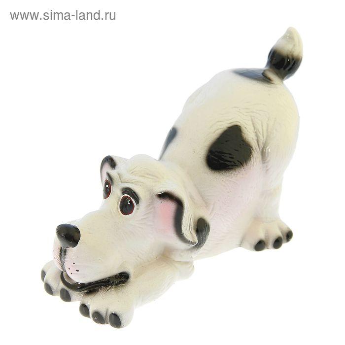 """Копилка """"Собака Ричард"""" малая, глянец, белая"""